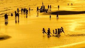 Σκιαγραφία και χρυσός Στοκ εικόνες με δικαίωμα ελεύθερης χρήσης