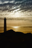 Σκιαγραφία και seagull φάρων Στοκ Φωτογραφίες