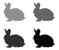 Σκιαγραφία κουνελιών Στοκ φωτογραφίες με δικαίωμα ελεύθερης χρήσης