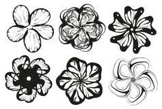 Σκιαγραφία λουλουδιών   Στοκ Φωτογραφίες