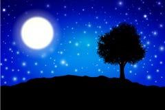 σκιαγραφία μεσάνυχτων Στοκ φωτογραφία με δικαίωμα ελεύθερης χρήσης