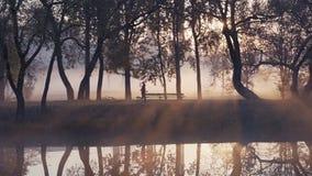 Σκιαγραφία μιας γυναίκας που τρέχει στο πάρκο κατά τη διάρκεια μιας ομιχλώδους, ανατολής φθινοπώρου απόθεμα βίντεο