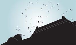 Σκιαγραφία πουλιών που πετά πέρα από το παλαιό κτήριο Στοκ Εικόνες