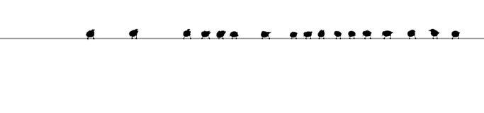 Σκιαγραφία πουλιών στο καλώδιο Στοκ φωτογραφία με δικαίωμα ελεύθερης χρήσης