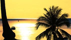 Σκιαγραφία στο ηλιοβασίλεμα στο τροπικό νησί Στοκ φωτογραφία με δικαίωμα ελεύθερης χρήσης