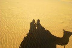 Σκιαγραφία της καμήλας Στοκ εικόνες με δικαίωμα ελεύθερης χρήσης