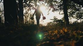 Σκιαγραφία της νέας γυναίκας που τρέχει μέσω του δάσους φθινοπώρου με τις ανθοδέσμες των κίτρινων φύλλων στα χέρια της και που ρί απόθεμα βίντεο