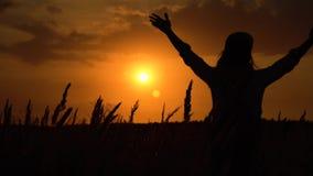 Σκιαγραφία της νέας χαλαρωμένης γυναίκας που απολαμβάνει το ηλιοβασίλεμα απόθεμα βίντεο
