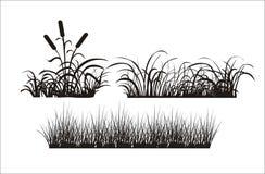 Σκιαγραφία της χλόης Στοκ εικόνα με δικαίωμα ελεύθερης χρήσης