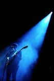 Σκιαγραφία της Romy Madley, τραγουδιστής και κιθαρίστας του ΧΧ στοκ εικόνες