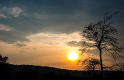 Σκιαγραφία του δέντρου και του βουνού με τον ουρανό ηλιοβασιλέματος Στοκ Φωτογραφία