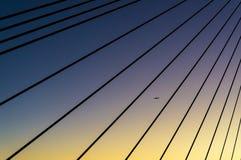 Σκιαγραφία του αεροπλάνου που αντιμετωπίζεται μέσω των καλωδίων χάλυβα γεφυρών ANZAC Στοκ Εικόνες