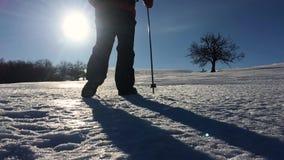 Σκιαγραφία του ατόμου με ένα σακίδιο πλάτης που περπατά σε ένα χειμερινό τοπίο στα πλέγματα σχήματος ρακέτας Πραγματοποιώντας οδο απόθεμα βίντεο