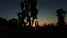 Σκιαγραφία του ευτυχούς γαμήλιου ζεύγους που φιλά μαλακά στο δασικό υπόβαθρο Θαυμάσιο ηλιοβασίλεμα στην επαρχία φιλμ μικρού μήκους