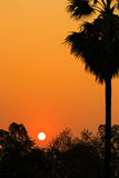 Σκιαγραφία του ηλιοβασιλέματος Στοκ φωτογραφία με δικαίωμα ελεύθερης χρήσης