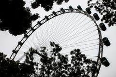 Σκιαγραφία του ιπτάμενου της Σιγκαπούρης Στοκ φωτογραφία με δικαίωμα ελεύθερης χρήσης