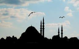 Σκιαγραφία του μουσουλμανικού τεμένους Στοκ φωτογραφίες με δικαίωμα ελεύθερης χρήσης