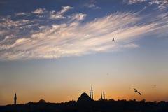 Σκιαγραφία του μουσουλμανικού τεμένους Süleymaniye και του πύργου Beyazid Στοκ Εικόνα