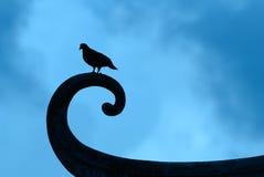 Σκιαγραφία του πουλιού στην κινεζική στέγη Στοκ Εικόνες