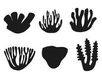 Σκιαγραφία του συνόλου φυκιών και κοραλλιών Απομονωμένος στο άσπρο backgroun απεικόνιση αποθεμάτων