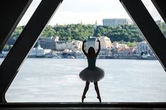Σκιαγραφία του χαριτωμένου ballerina στο άσπρο tutu στοκ φωτογραφία με δικαίωμα ελεύθερης χρήσης