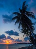 Σκιαγραφία των φοινίκων στο ηλιοβασίλεμα και τα πολύχρωμα σύννεφα στοκ εικόνα