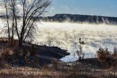 Σκιαγραφία των ψαράδων ενάντια στον ήλιο και την ομίχλη ξημερωμάτων Στοκ Φωτογραφίες