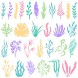 Σκιαγραφία φυκιών ενυδρείων Υποβρύχια εγκαταστάσεις και φύκια φύτευσης για το ντεκόρ ενυδρείων Διανυσματικό σύνολο θαλασσίων φυτώ ελεύθερη απεικόνιση δικαιώματος