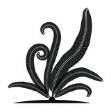 Σκιαγραφία φύλλων φτερών τροπική Στοκ Εικόνα