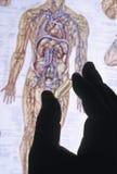 σκιαγραφία χαπιών χεριών Στοκ Φωτογραφία