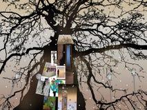 Σκιαγραφία χειμερινών δέντρων πέρα από το ελαφρύ υπόβαθρο με τις αφίσες, τα δελτία και τις ειδοποιήσεις Στοκ φωτογραφίες με δικαίωμα ελεύθερης χρήσης