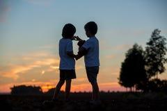 Σκιαγραφία δύο παιδιών, αδελφοί αγοριών, που κατασκευάζουν την καρδιά να διαμορφώσει το πνεύμα Στοκ εικόνα με δικαίωμα ελεύθερης χρήσης