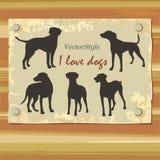 Σκιαγραφία greyhounds στο διάνυσμα Στοκ Εικόνες