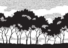 Σκιαγραφίες δέντρων Στοκ Εικόνες