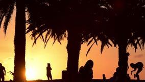 Σκιαγραφίες ανθρώπων στο ευτυχές κοινωνικό καλοκαίρι πάρκων απόθεμα βίντεο