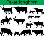 Σκιαγραφίες βοοειδών του Τέξας longhorn Διανυσματική απεικόνιση