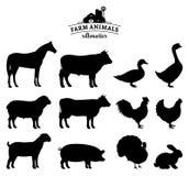 Σκιαγραφίες ζώων αγροκτημάτων που απομονώνονται στο λευκό Στοκ Φωτογραφία