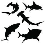 Σκιαγραφίες καρχαριών καθορισμένες Στοκ φωτογραφία με δικαίωμα ελεύθερης χρήσης