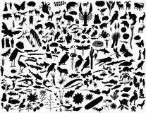 σκιαγραφίες κολάζ διανυσματική απεικόνιση