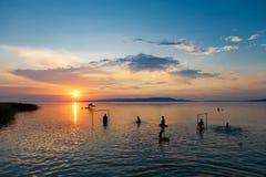 Σκιαγραφίες λουομένων ` s στο ηλιοβασίλεμα στη λίμνη Balaton, Ουγγαρία Στοκ εικόνες με δικαίωμα ελεύθερης χρήσης