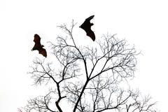 Σκιαγραφίες ροπάλων με το άγονο δέντρο Στοκ Εικόνες