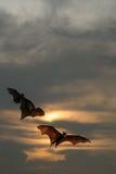 Σκιαγραφίες ροπάλων με το φωτισμό ηλιοβασιλέματος - φεστιβάλ αποκριών Στοκ εικόνα με δικαίωμα ελεύθερης χρήσης