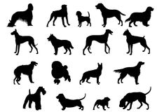 σκιαγραφίες σκυλιών Στοκ Φωτογραφία