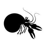 Σκιαγραφίες του ερημίτη crabr γραπτού Στοκ Φωτογραφία