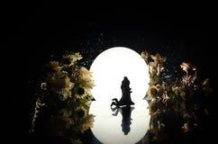 Σκιαγραφίες του ζεύγους παιχνιδιών που χορεύουν κάτω από το φεγγάρι τη νύχτα Αριθμοί του ερωτευμένου χορού ανδρών και γυναικών στ Στοκ Εικόνα