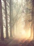 Σκιαγραφίες του ζεύγους στην ομίχλη Στοκ Εικόνες