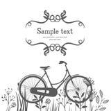 Σκιαγραφίες του ποδηλάτου και των χορταριών Στοκ Εικόνα