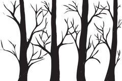 Σκιαγραφίες των δέντρων Στοκ εικόνα με δικαίωμα ελεύθερης χρήσης