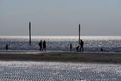 Σκιαγραφίες των ανθρώπων που περπατούν σε μια όμορφη παραλία στοκ εικόνες με δικαίωμα ελεύθερης χρήσης