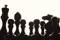 Σκιαγραφίες των αριθμών σκακιού για το άσπρο υπόβαθρο Στοκ Εικόνες